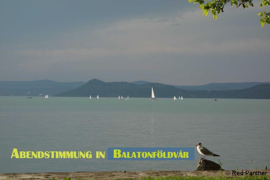 GÖMC-Treffen-Plattensee-2016-029.jpg