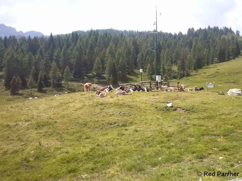 WeißenseeNaßfeld-058.jpg